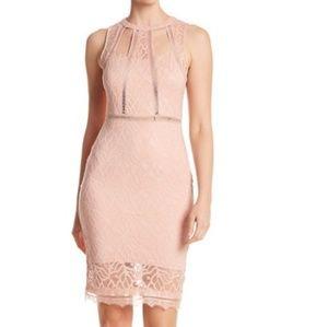 *NWOT Bebe Sheer Cutout Lace Sheath Dress in Blush